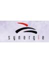 Synergie Publishing